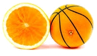 Alimentazione ed attività sportiva